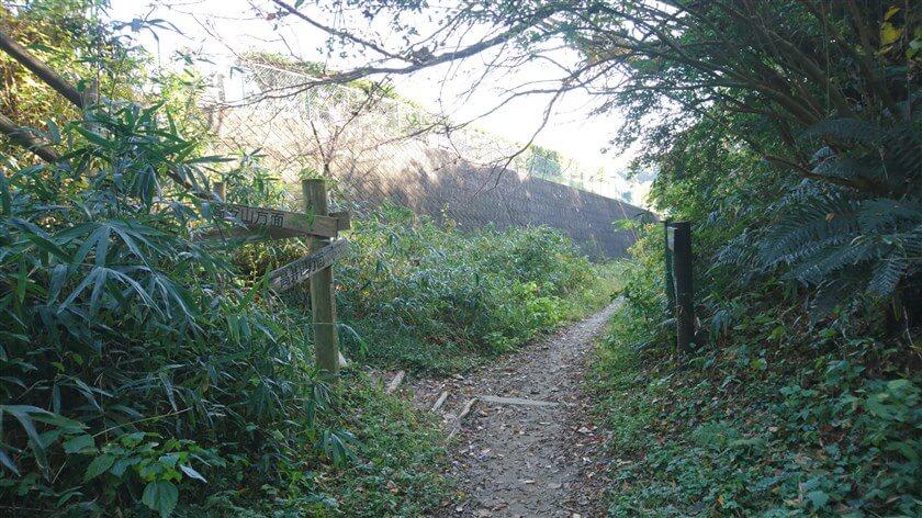 恩智峠から少し上に行った所に、「左:高安山」の道標がある