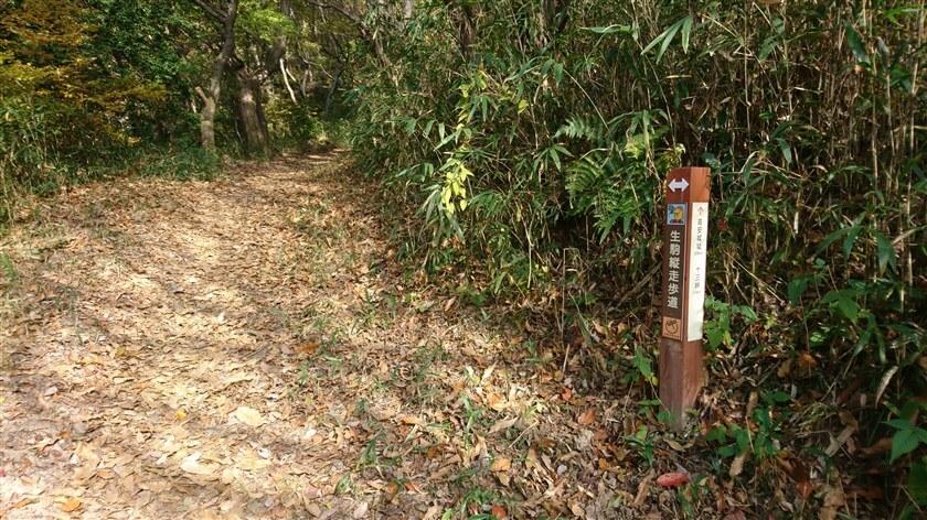 開運橋を過ぎると、「生駒縦走歩道」直進:高安城址 0.5km、十三峠越 3.4km の道標がある