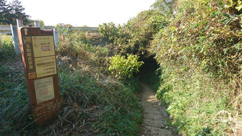 左に行くと、十三峠ハイキングコースに降りる