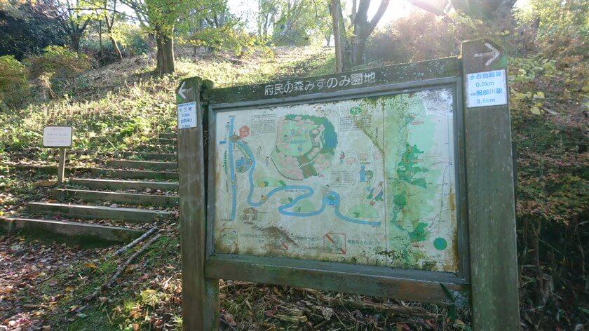十三峠越えルートを下ると、すぐに「府民の森 みずのみ園地」がある