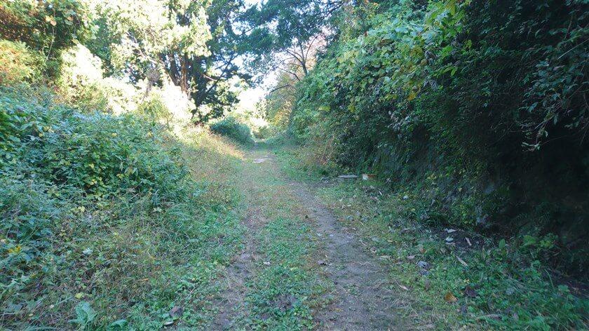 「市民の森」を過ぎると、山道になる