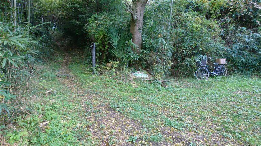 「信貴道ハイキング道」1本目の道標があり、ここから、道が狭くなる