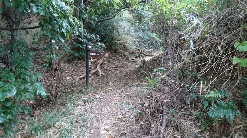 「信貴道ハイキング道」2本目の道標。右:高安山。