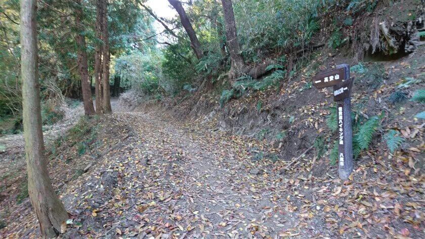 「信貴道ハイキング道」6本目の道標。この辺りの道は、広く歩きやすい。