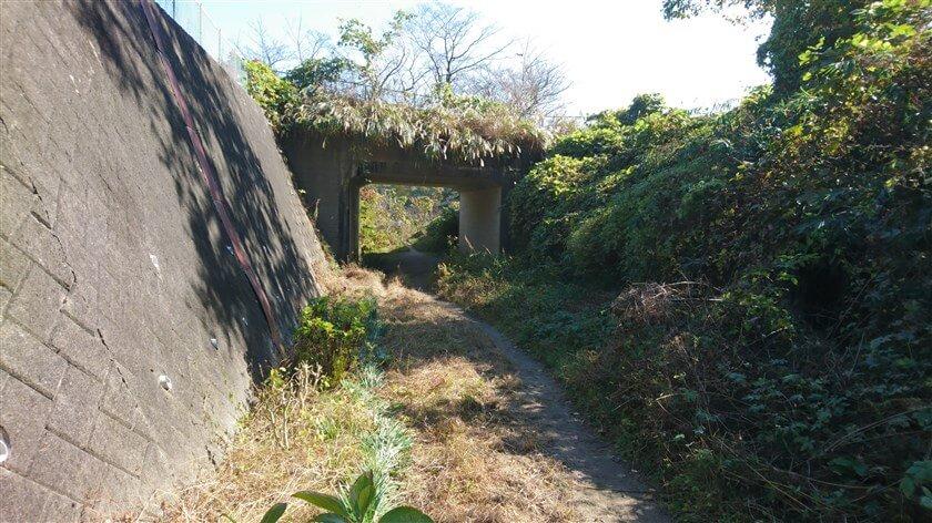 木の階段をおりて左に進むと、高架下を通る