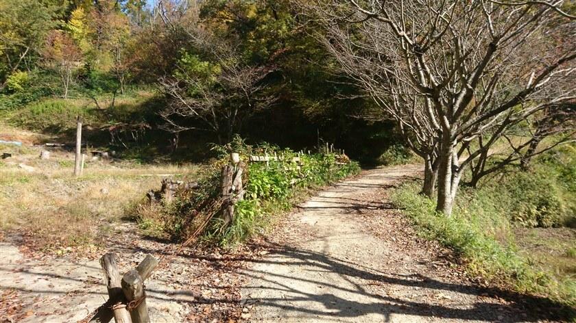 「信貴山のどか村」への道:私有地の横あたり
