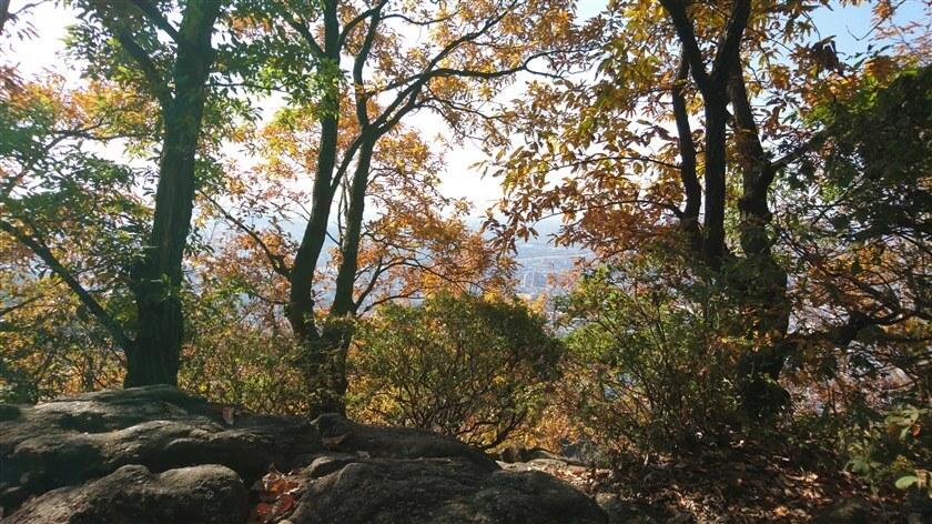 『高尾山山頂』からの眺め。僅かに大和川が見える。