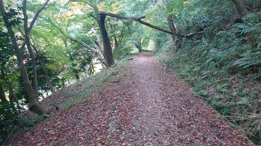 「水呑地蔵尊」の上辺り。真っ直ぐ下って少し戻るように進んでも良いが、この左にある道を下ると、「水呑地蔵尊」の裏に出る。