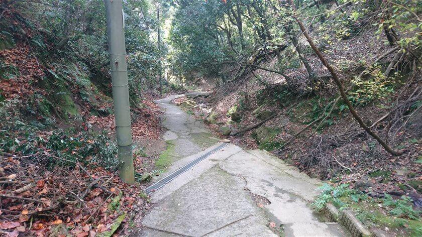 十三街道ハイキング道:掃除された直後の感じがする。この「十三峠越え」を歩くたびに、道を掃いている高齢の男性の姿を見る。「感謝」。
