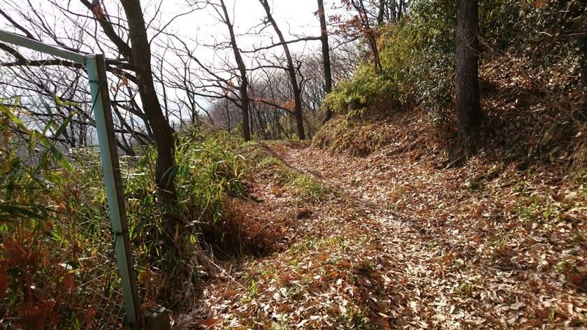 左側が谷になった、陽射しが射す道を下る
