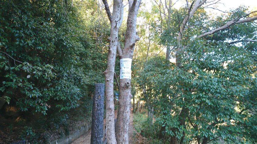 総池(そいけ)の横に、通報ポイント看板「おんじごえ4」がある