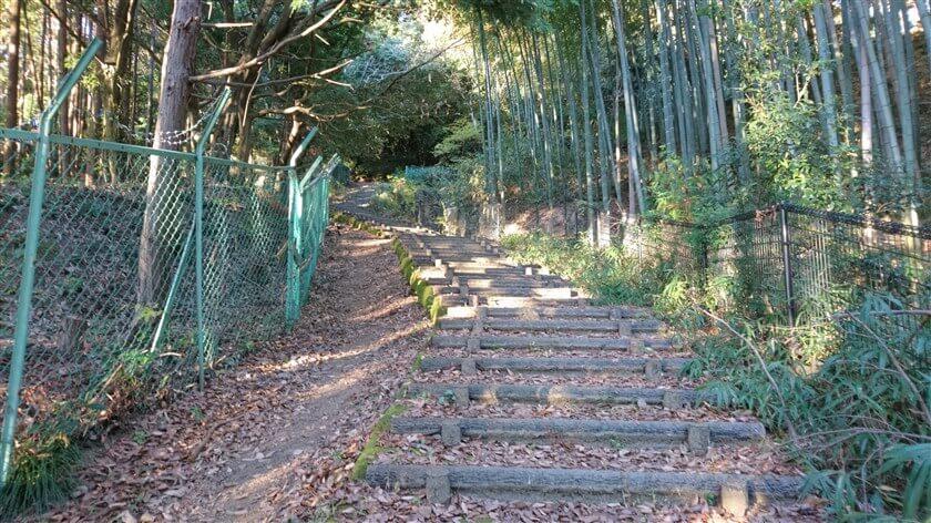 広い階段の道になる