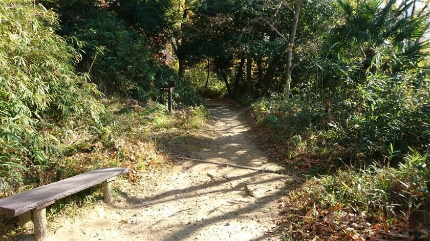 このベンチの先に、左「高安山」と書かれた道標がある