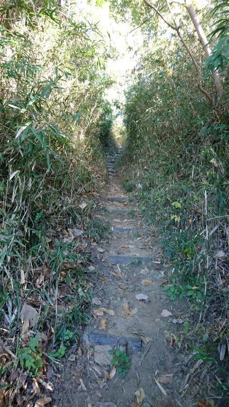 最初は急な登りで、滑り止めの階段が作られている