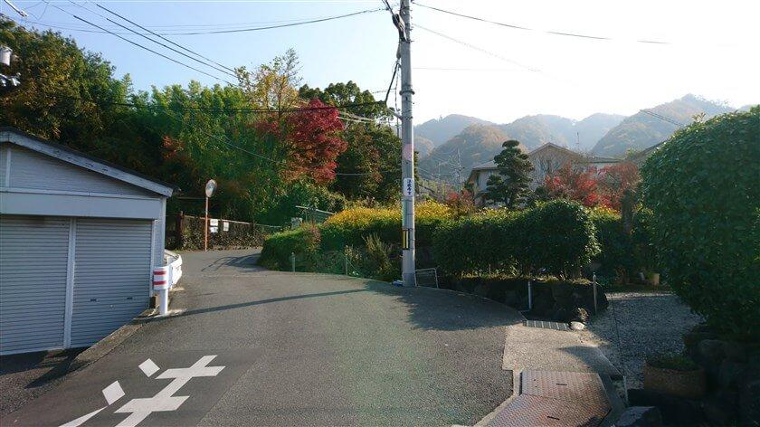 ここからは一直線に山側に登るので、道に迷うことはない。電柱「法蔵寺」の標識が貼ってある