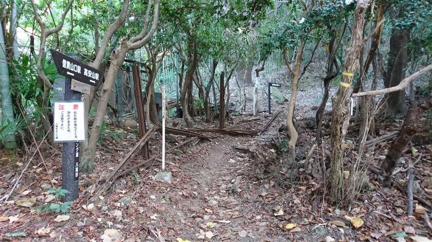 トレイル開始地点に「おおみちハイキング道」(1本目)の道標があり、ここから本格的な山道に突入する