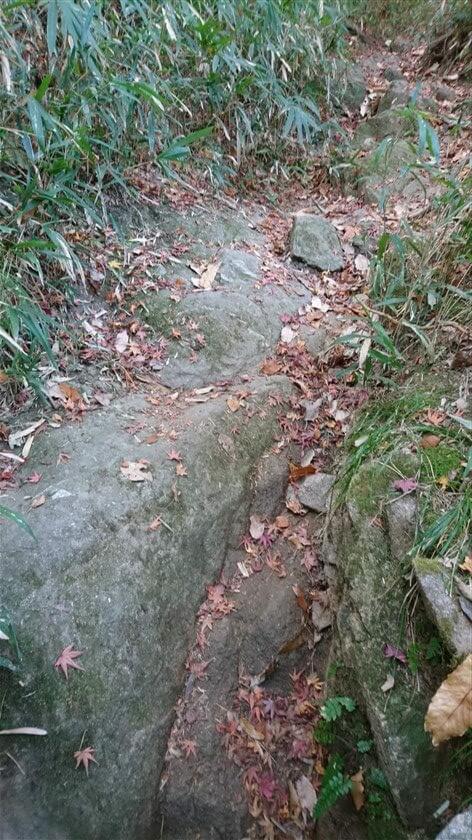 このルートは、岩が多い