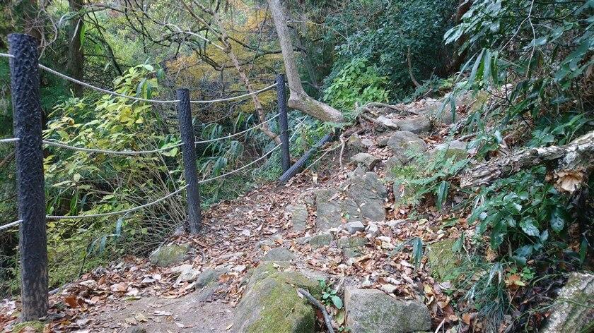 岩場の横にも、柵が作ってある