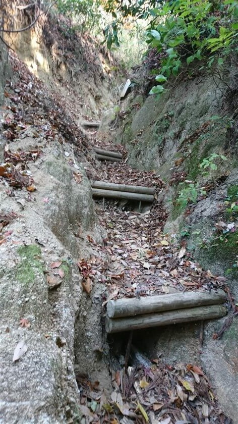 余りにも急なため、階段が作ってある