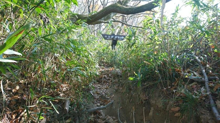 開運橋を潜ると「← 十三峠 高安山駅 →」の道標がある。「おおみちハイキング道」(5本目)の道標。