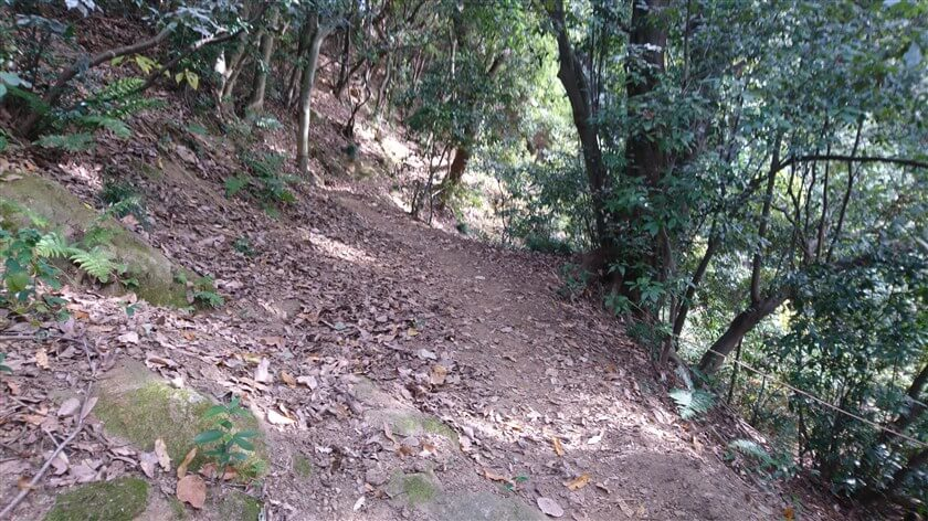 右側が崖になっている