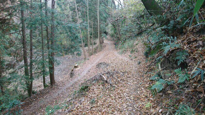 やがて、左からの道【黒谷からと岩戸神社からの「信貴道」】と合流する