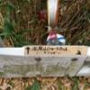 ガードレールの上側には「↑高尾山ショートカット ただし ヤブコギ あり」と書かれたガムテープが張られている