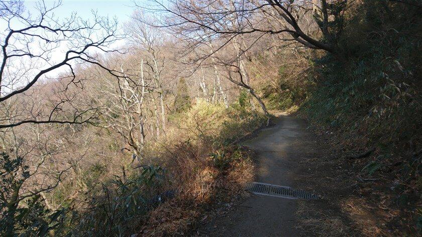 左が谷になって、道が細くなる