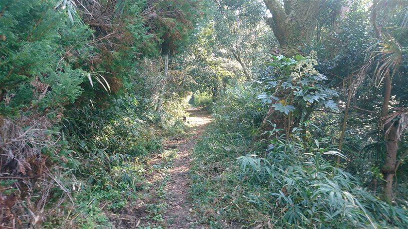 総池(そいけ)を過ぎると、山道に入る