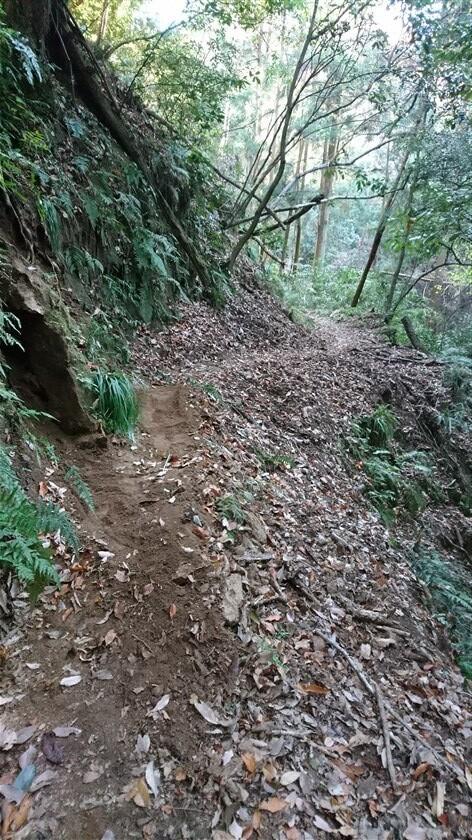 道は、渓流に沿って進む