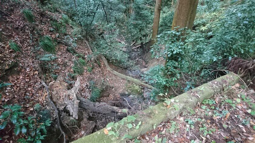 渓流の様子。水量は殆んど無い。