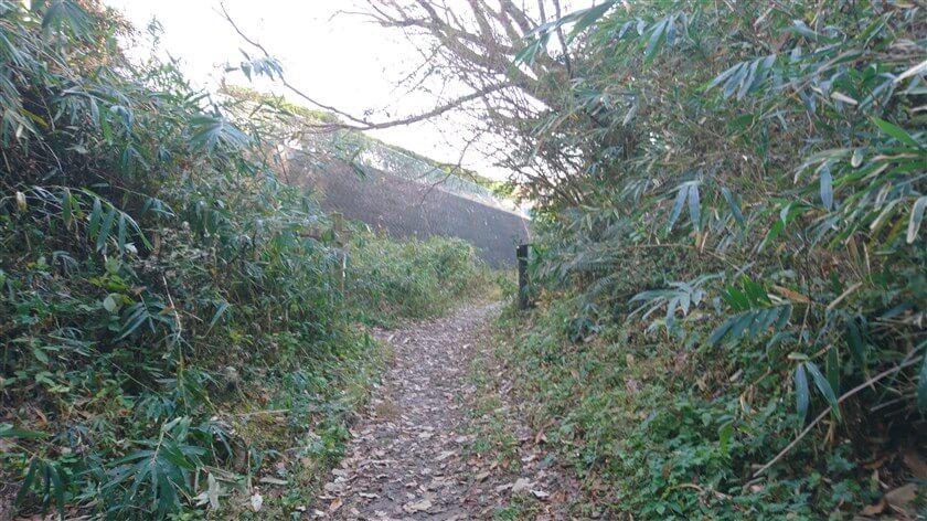 程なく左手に壁が現れ、生駒縦走歩道に上がる階段がみえてくる