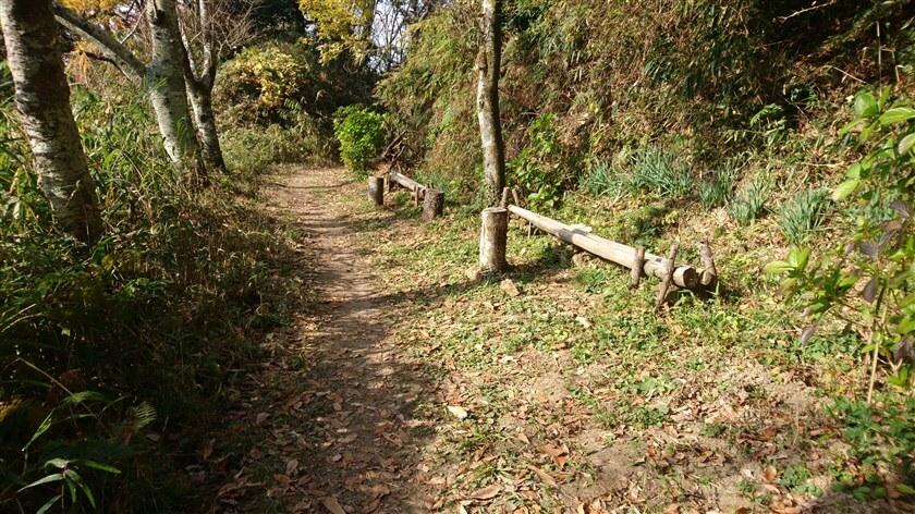ベンチ番号:8。日当たりの良い場所に2つのベンチがあり、それぞれに木の根のテーブルが備わっている。