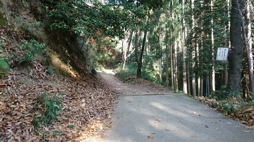 舗装路と土の道が交互になっている