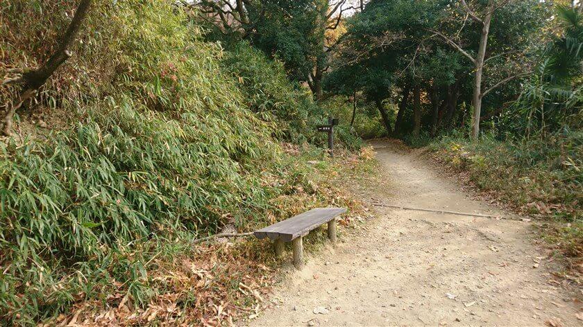 最初の休憩所「四阿」を過ぎると直ぐにベンチがあり、この先に、左「高安山」と書かれた道標がある。ここを左に登ると、「恩智信貴道」に入る