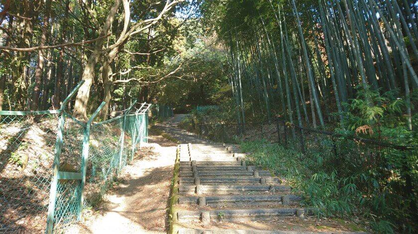 恩智神社の裏手にある、整備された「遊歩道」の階段を上る