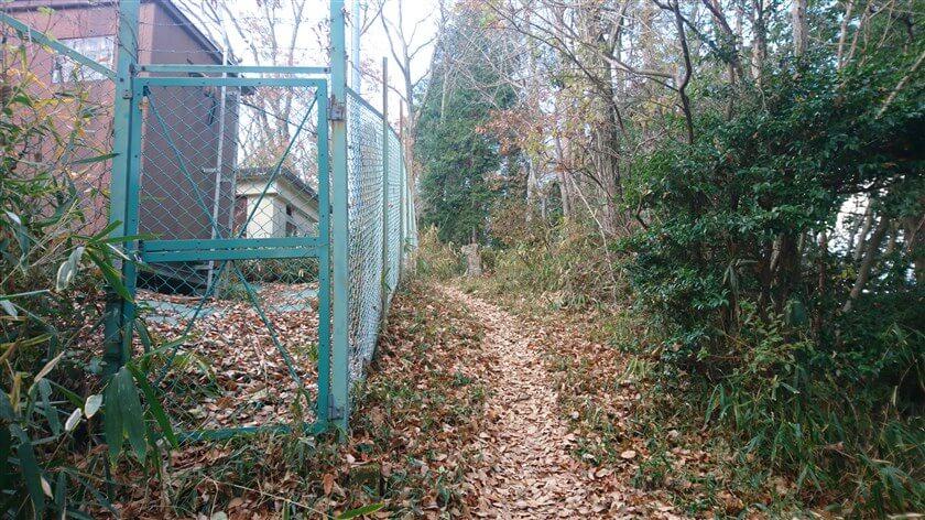恩智テレメータ中継所のフェンス横を通る