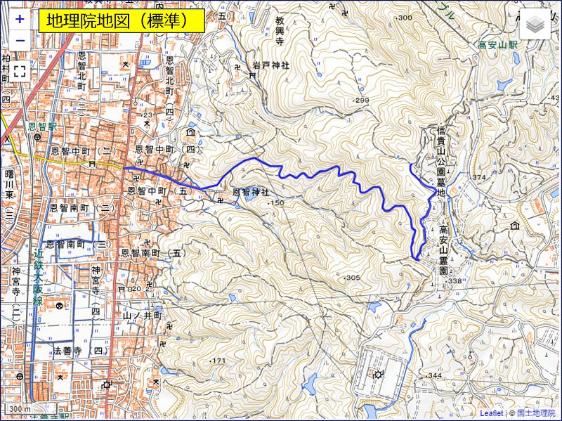 「地理院地図(標準)」を指定した場合の表示