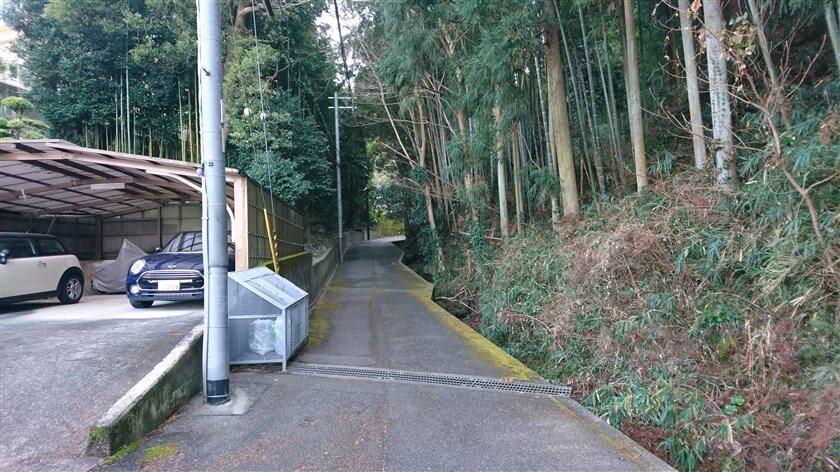 恩智神社の南側を通る、細い川沿いの道を行く