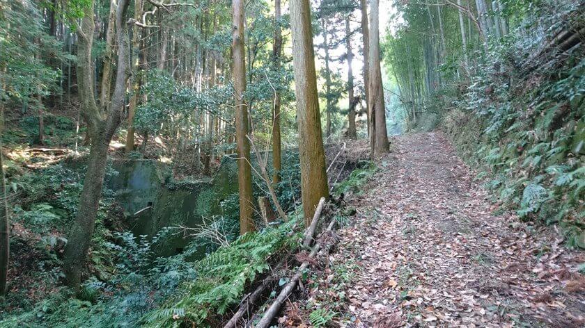 道は広く、左には砂防ダムがある