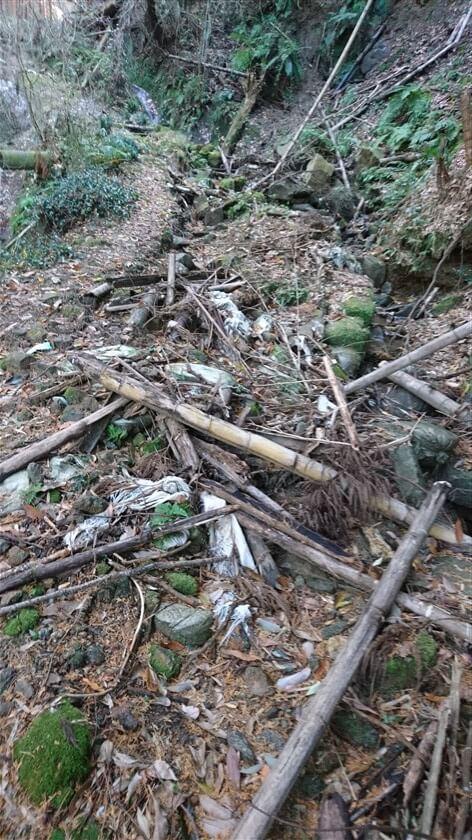 やがて、倒木ならぬ「竹が無数に倒れた荒れた道」になり、跨ぎながら超えてゆくのに手間がかかる