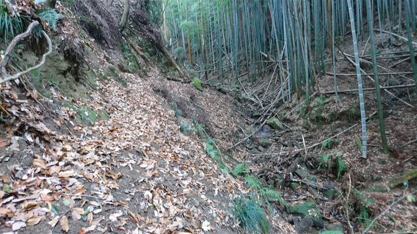 渓流沿いの、狭い・滑り落ちそうな道が続く