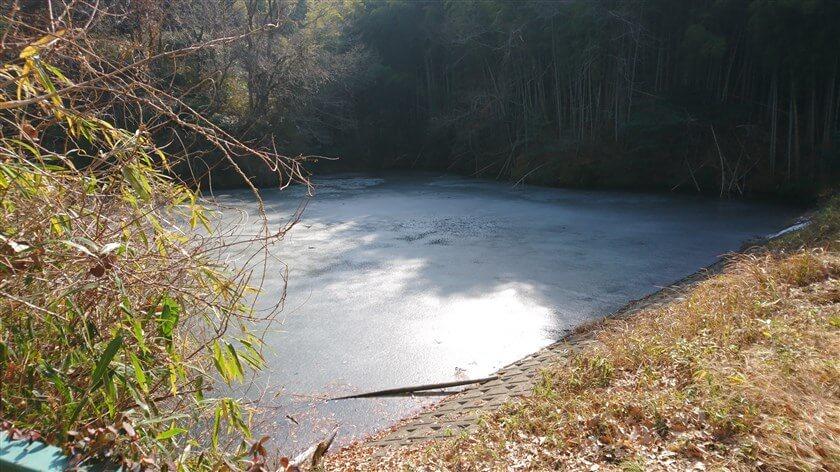 表面が凍っている池に出た。「立原池」だ。