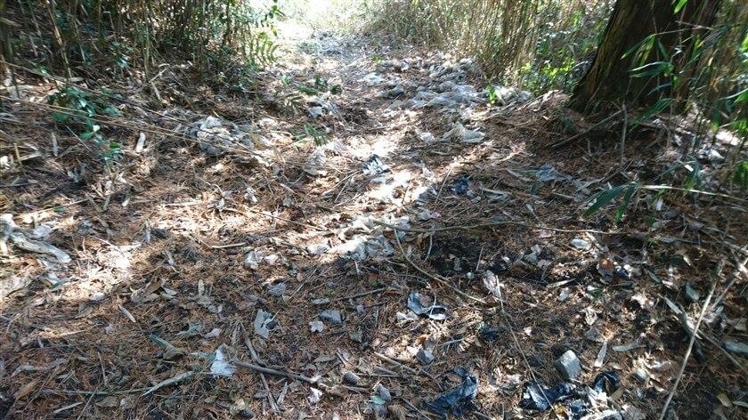 道一面に、「ゴミ」が散乱している箇所がある