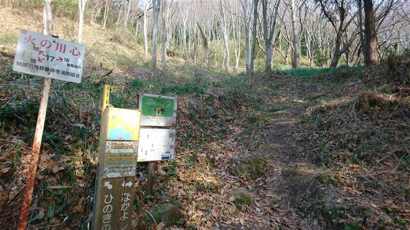 「ひのきの道」への分岐点があるが、「なかよしの道」をさらに上に登る