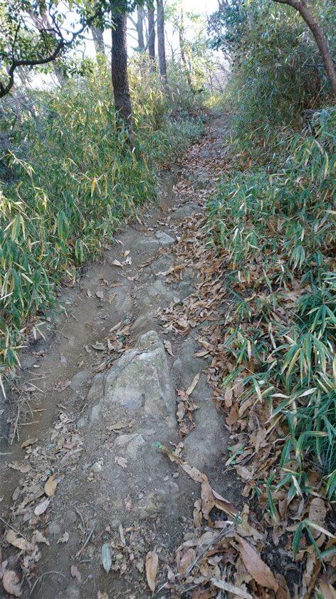 土の部分が削られ、岩が露出している