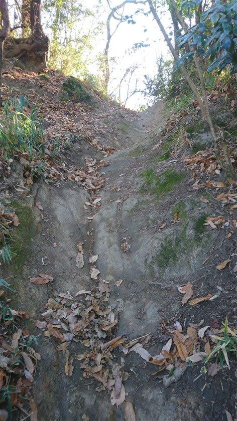 崖を落ちるほどの段差がある。登る者にとっては、よじ登る感じ。