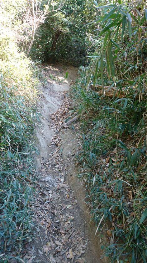 このような急斜面で、上からマウンテンバイクが落ちてくると、避け場所がない