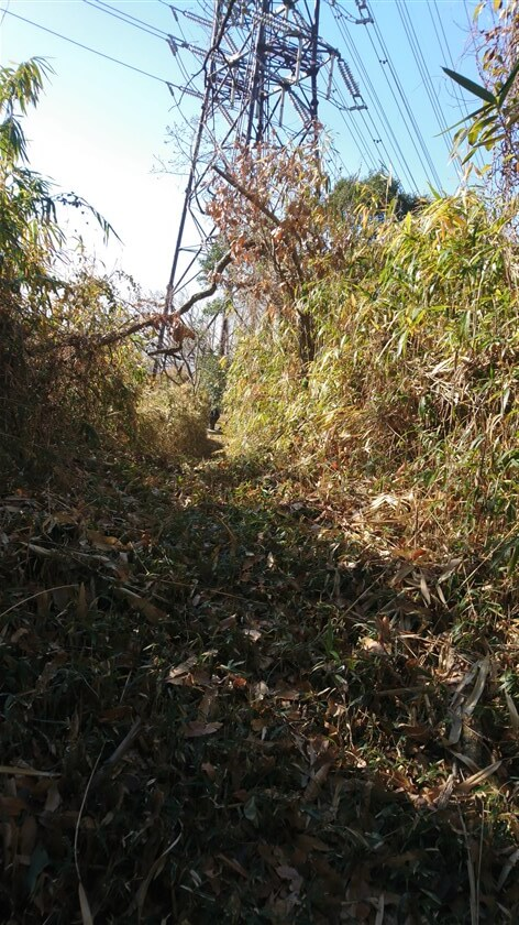右に鉄塔が見える箇所に出ると、笹が刈り取られ鉄塔への道が開けている