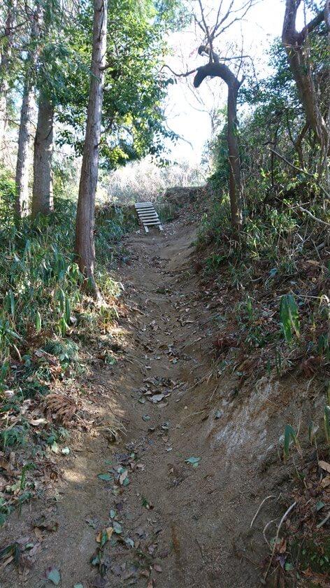 このルート最大の難関と言っていい「壁」に直面するが、はしごが掛かっている